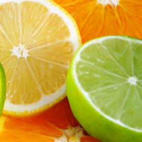 1 citrus slices 280 x 280